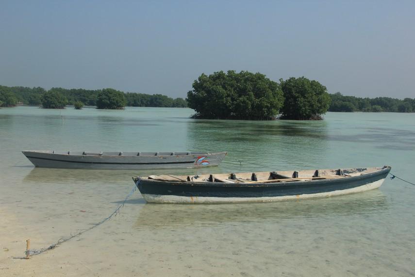 Perahu sampan nelayan yang bisa digunakan pengunjung di Pulau Pari untuk berkeliling melihat hutan manggrove