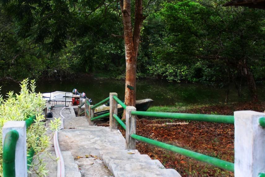 Perjalanan menuju Pantai Kuala Kambas dengan speedboat memakan waktu sekitar 1 jam perjalanan