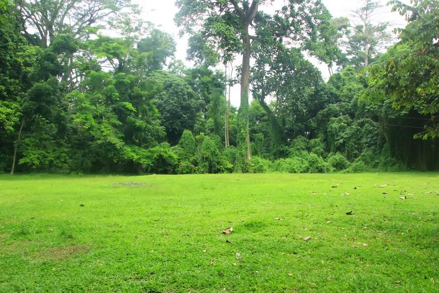 Pihak pengelola juga menyediakan lahan berkemah untuk pengunjung
