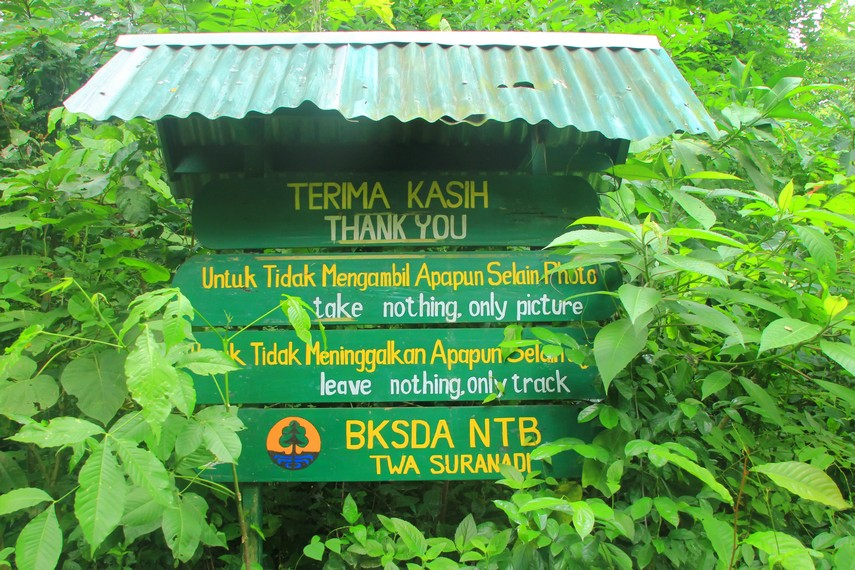 Pihak pengelola sengaja memasang tanda kebersihan guna memperingatkan para pengunjung agar menjaga wilayah Hutan Suranadi