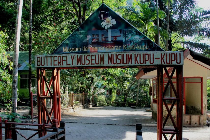 Pintu masuk menuju Museum Kupu-kupu Bantimurung, tempat yang menyimpan berbagai spesies kupu-kupu dari berbagai daerah