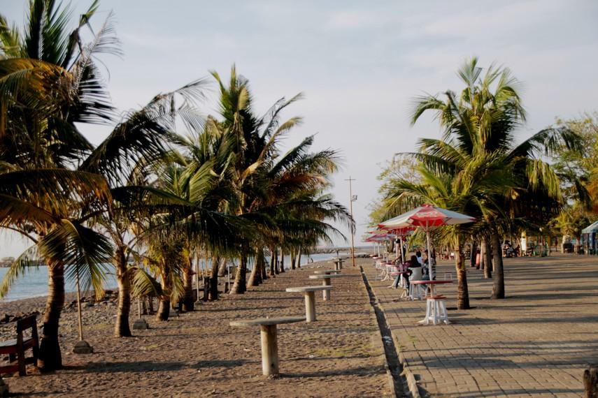 Pohon Kelapa yang tumbuh di sekeliling pantai membuat Pantai Akkarena terasa teduh