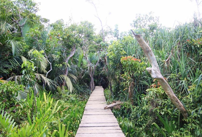 Pulau Kembang ditetapkan sebagai salah satu hutan wisata oleh pemerintah