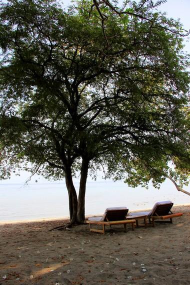 Pulau Moyo memiliki garis pantai sepanjang sekitar 88 km