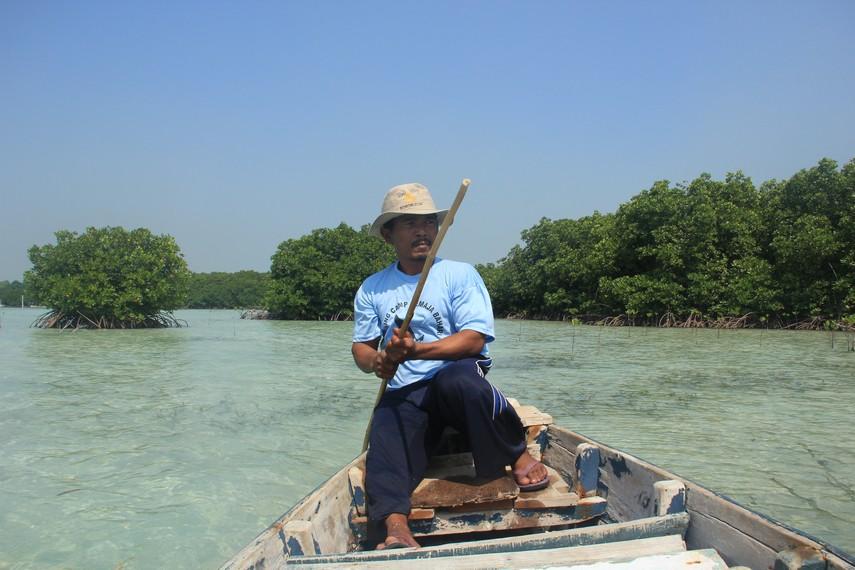 Pulau Pari juga menyediakan jasa tour guide bagi para pengunjung untuk berkeliling hutan bakau