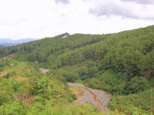 Panorama Puncak Ampangan, Lukisan Alam Nan Indah di Kaki Gunung Sago
