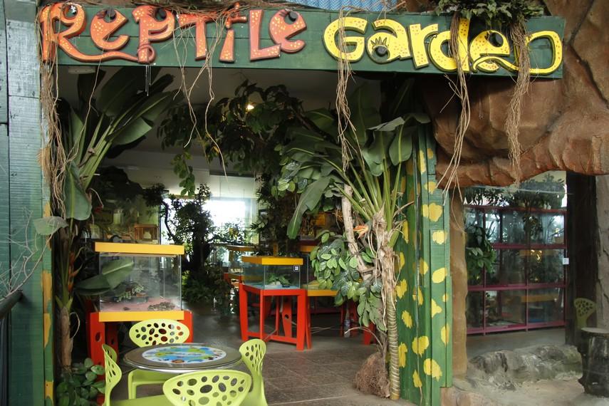 Reptil Garden salah satu arena khusus tempat hewan-hewan reptil