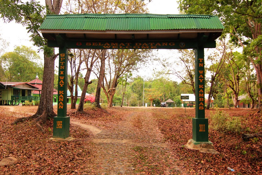 Resort Way Kanan terletak sekitar 13 km dari Plang Ijo, gerbang masuk TN Way Kambas