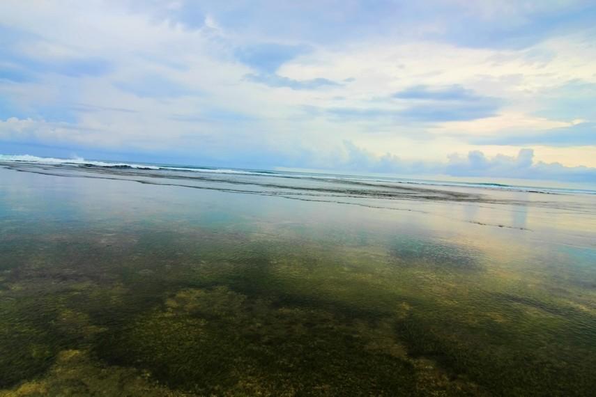 Rumput-rumput yang berada dalam air memberikan rasa nyaman dan rileks ketika kita menginjaknya