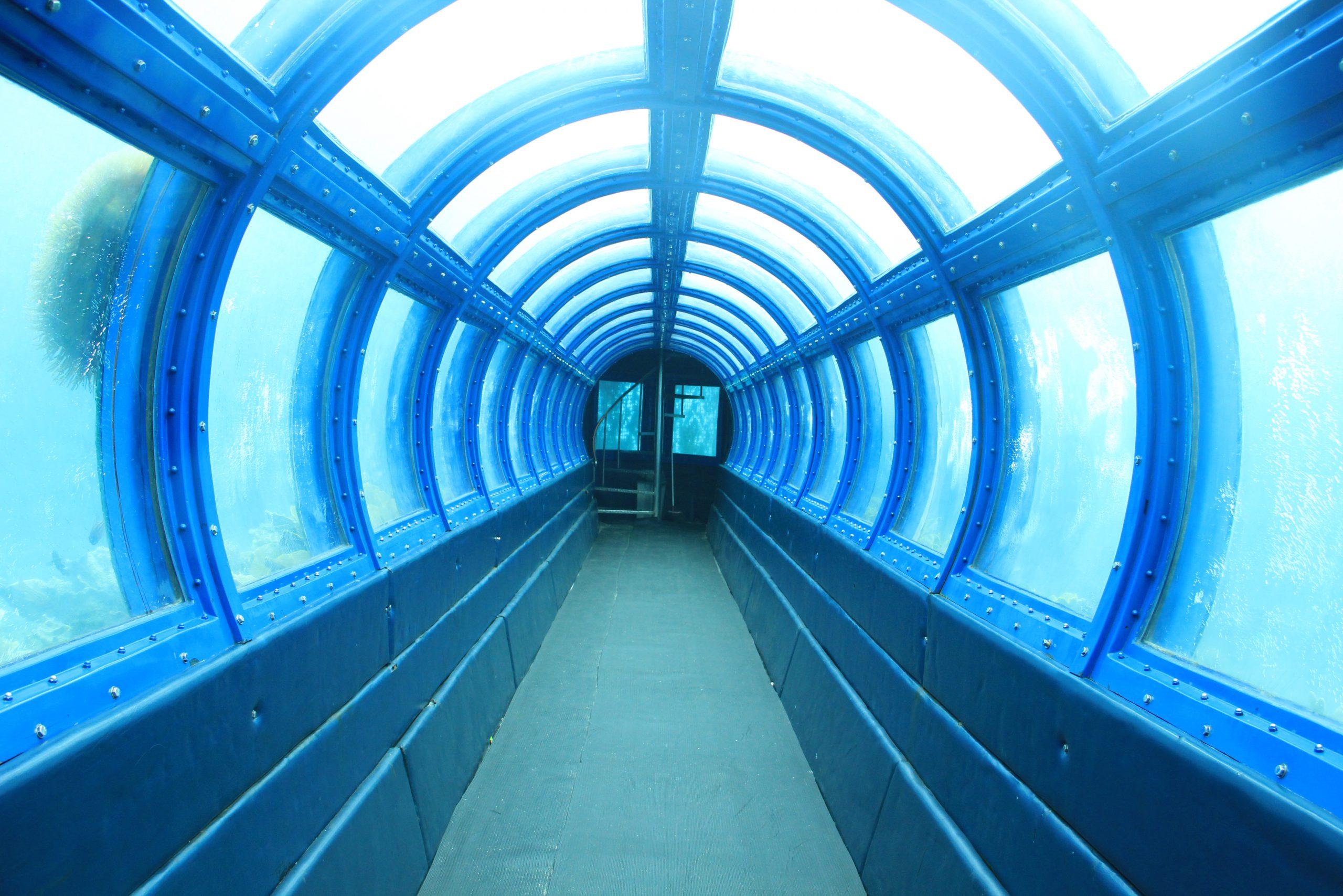 Salah satu daya tarik di Pulau Putri adalah adanya terowongan bawah laut untuk melihat langsung biota laut