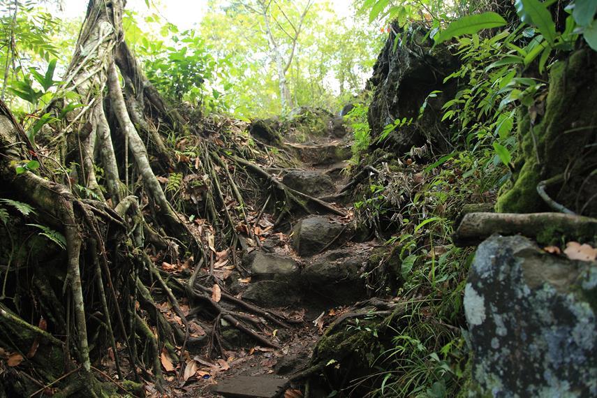 Salah satu medan jalan yang harus dilewati ketika menuju Saomadaha