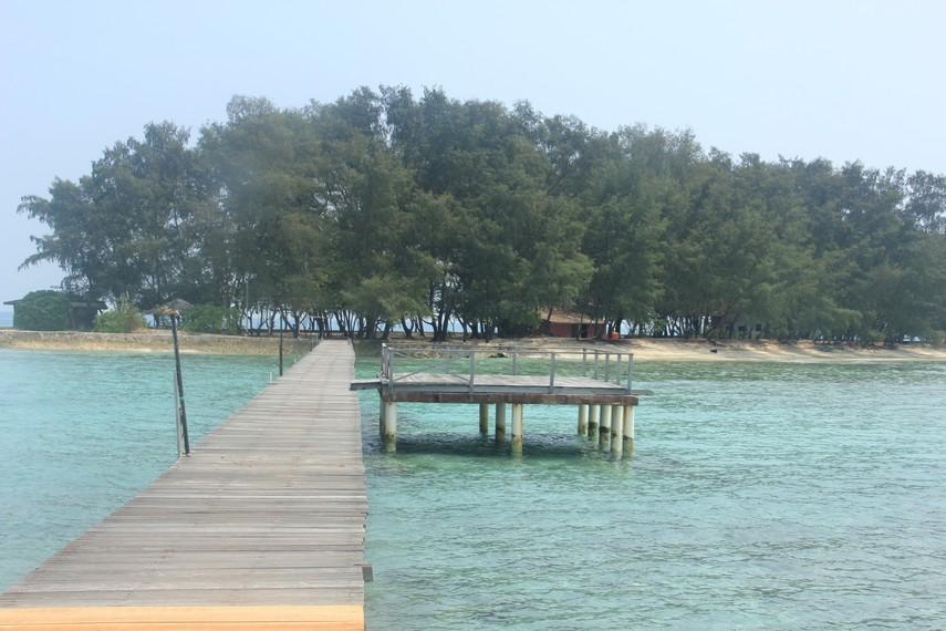 Salah satu sudut pemandangan Pulau Bira dengan pepohonan yang tumbuh di sekitar pantai