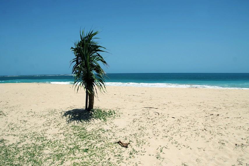 Satu tahun setelah tsunami, aktivitas pariwisata di pantai ini kembali pulih seperti sedia kala