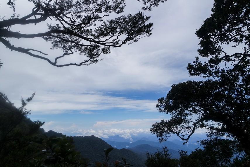 Sedikit pemandangan yang bisa dilihat sepanjang jalur Gunung Bukit Raya