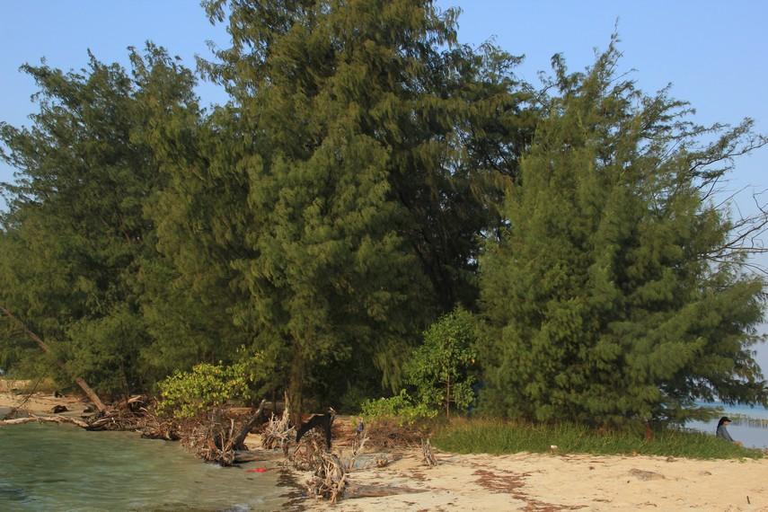 Banyaknya pohon Semak Daun di sekitar pulau ini menjadikan pulau yang nyaman ini diberi nama Pulau Semak Daun