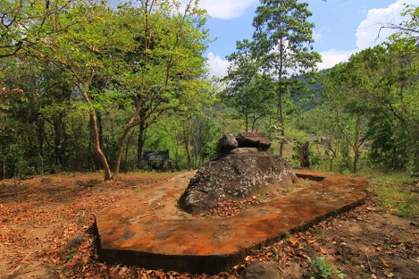 Situs batu dikategorikan sebagai batu sarkofagus yang berarti makam batu