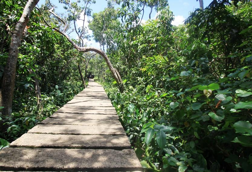 Suasana asri khas Pulau Kembang yang dapat pengunjung nikmati