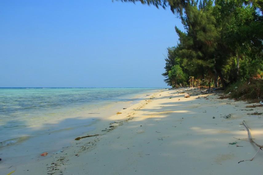 Suasana pantai yang dikelilingi pepohonan disekelilingnya membuat Pulau Tidung terasa begitu teduh