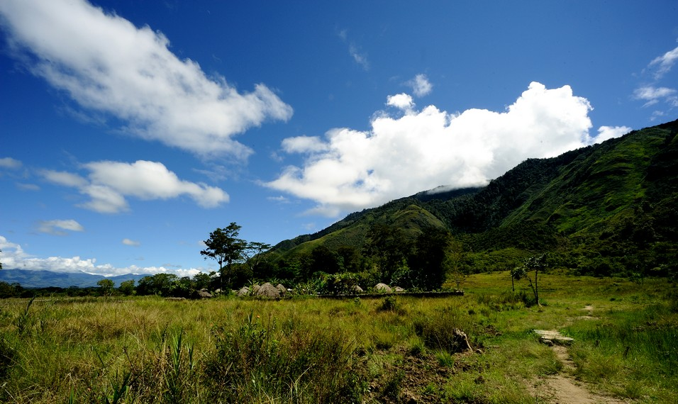 Suku Dani berada di salah satu pelosok di wamena - Papua