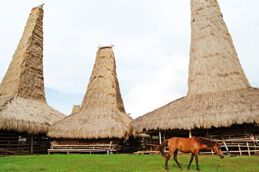 Terletak di wilayah Desa Umbu Ngedo, Kecamatan Kodi Bangedo