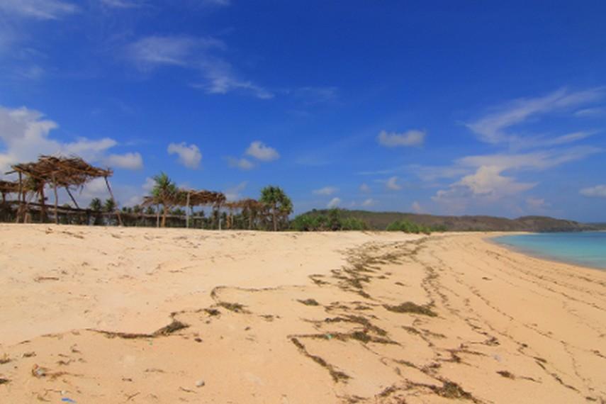 Tiap tahunnya, Pantai Seger dijadikan tempat untuk menggelar Festvial Bau Nyale oleh masyarakat setempat