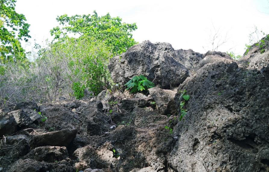 Trek menuju ke lokasi gua cukup terjal dan licin