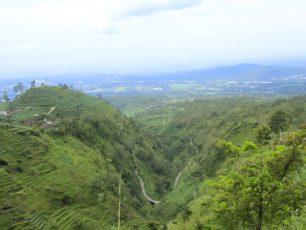 Berwisata Alam dengan Pemandangan Lereng Gunung di Umbul Sidomukti