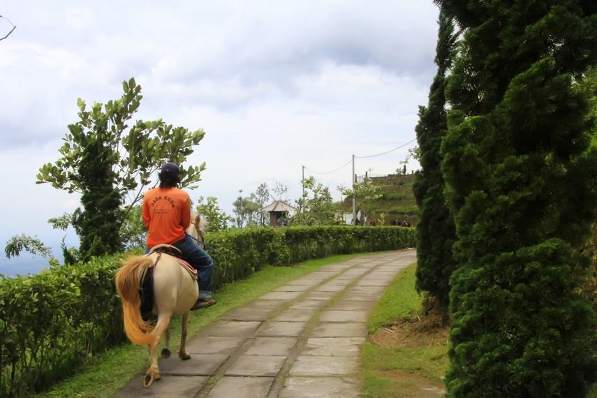 Wisata berkuda mengelilingi kawasan Umbul Sidomukti