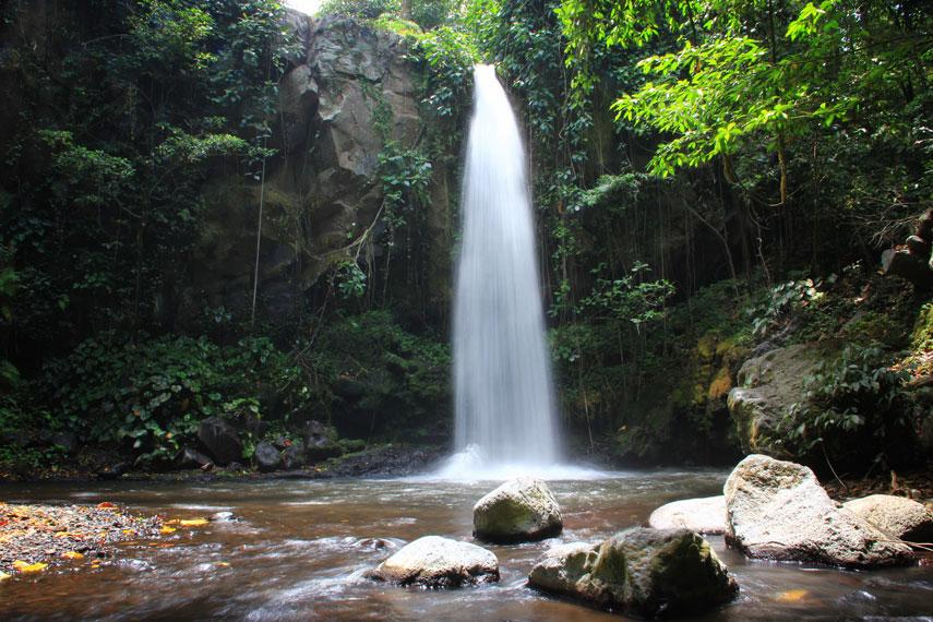 Letaknya yang berada di kawasan perkebunan menjadikan hawa sejuk begitu terasa di kawasan Air Terjun Selogiri