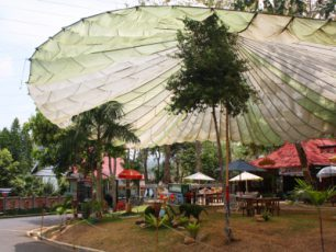 Paduan Seru Rekreasi dan Wisata Satwa