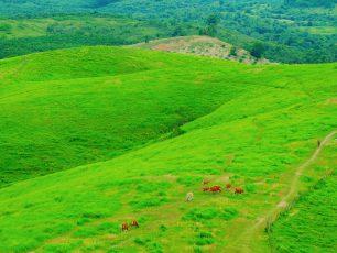 Bukit Rimpi, Bukit Teletubbiesnya Kota Pelaihari Kalimantan Selatan