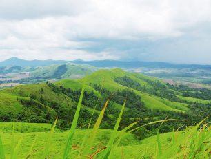 Panorama Keindahan Bukit Telang Pelaihari, Serasa di Perbukitan Sumba