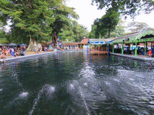Berenang Bersama Ikan Dewa di Pemandian Cibulan