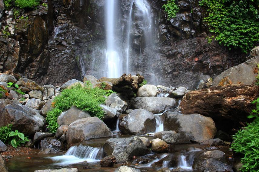 Curug ini masuk dalam kawasan Desa Suci, Kecamatan Panti, Jember, Jawa Timur