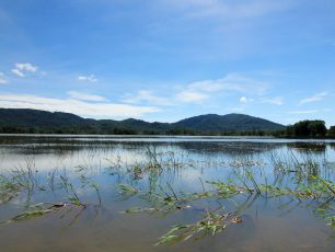 Menikmati Kesejukan dan Keasrian Danau Mempayak