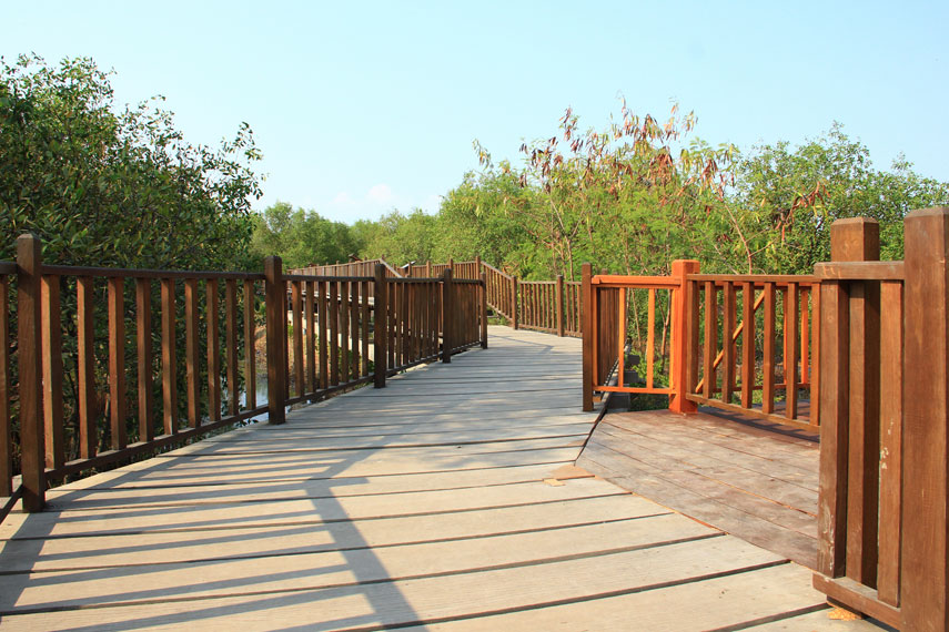 Dengan harga tiket yang terjangkau, pengunjung bisa menikmati wisata sambil belajar tentang pentingnya menanam mangrove di pinggir pantai
