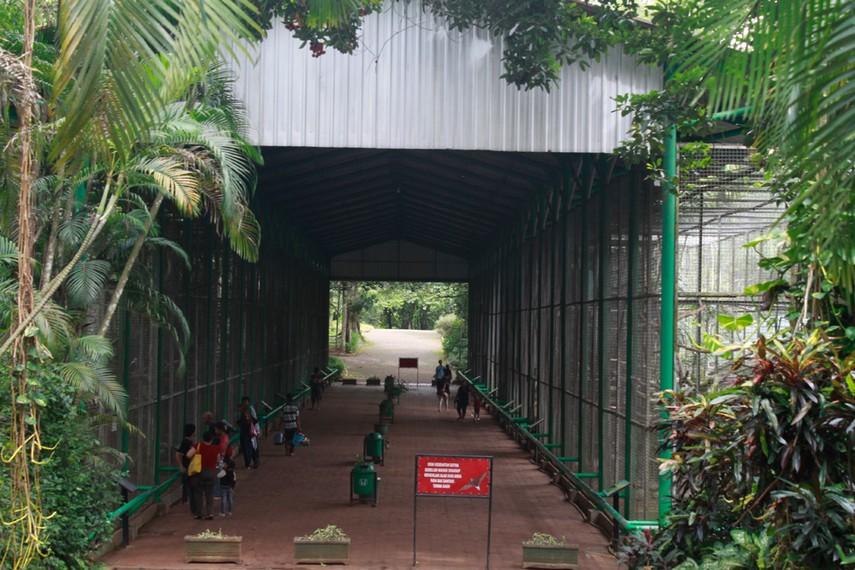 Jalan menuju tempat koleksi aneka jenis burung di Kebun Binatang Ragunan