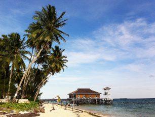 Menyelami Surga Bawah Laut Kepulauan Derawan