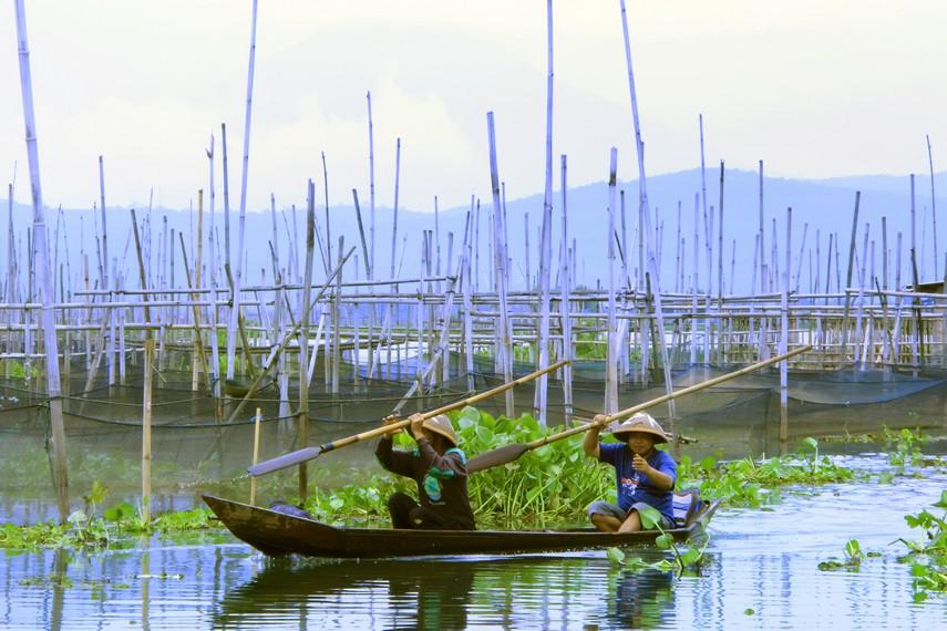 Nelayan yang memiliki tambak di Rawa Pening