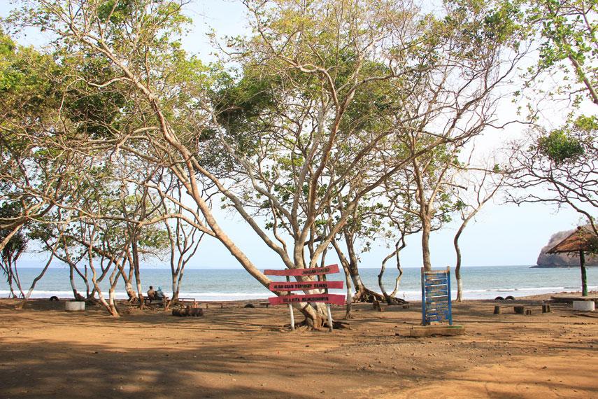 Pantai Grajagan memiliki letak bersebelahan dengan beberapa pantai yang terkenal akan keindahannya seperti Pantai Plengkung dan Pantai Pulau Merah