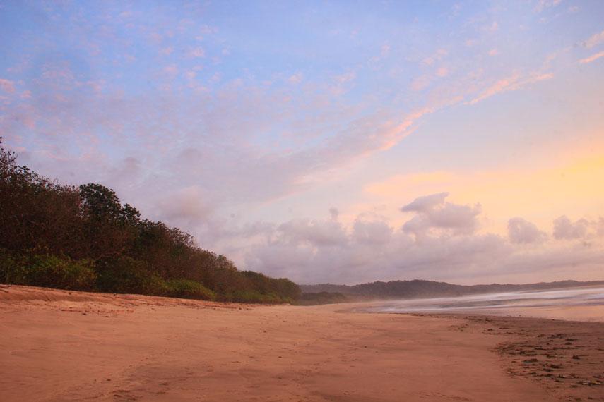 Lokasinya yang berada di dalam Taman Nasional Alas Purwo membuat perjalanan menuju lokasi pantai bagaikan petualangan yang menantang