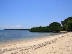 Pantai Bama, Pantai Eksotik di Balik Taman Nasional Baluran