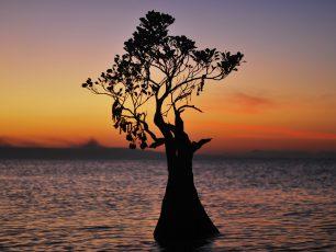 Fenomena Sunset yang Unik dan Artistik, di Pantai Walakiri Sumba Timur
