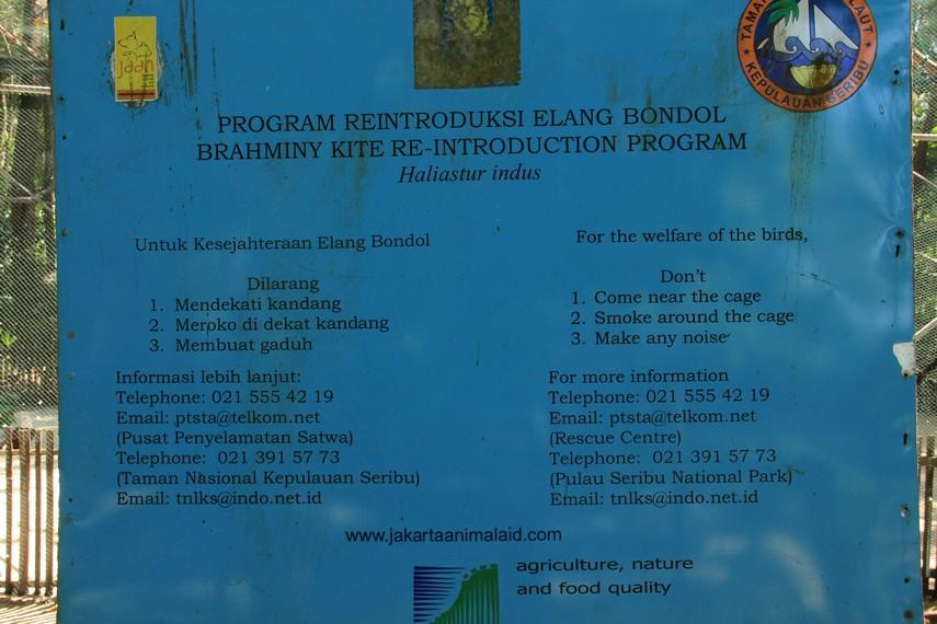 Papan panduan sekaligus informasi bagi pengunjung yang ingin melihat konservasi elang bondol di Pulau Kotok
