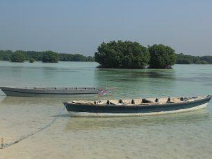 Menikmati Pesona Pantai Pasir Perawan di Pulau Pari