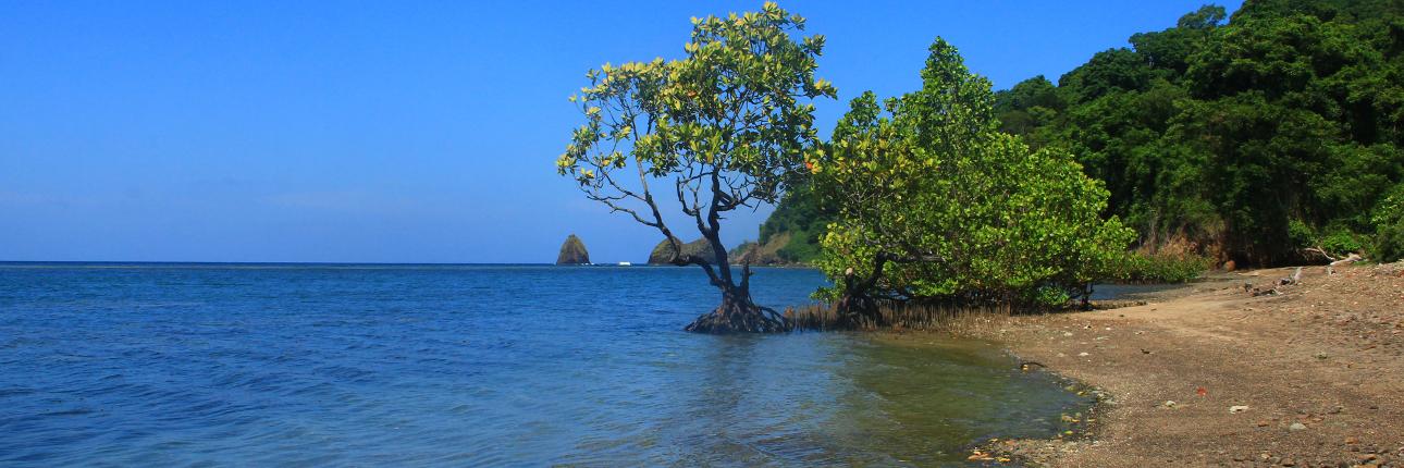 pulau_tumbak_1290.jpg