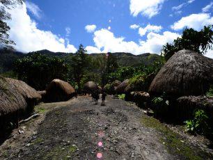Sistem Tempat Tinggal Sang Penghuni Lembah Baliem