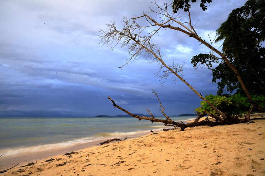 Pantai Saleo yang merupakan tempat tujuan wisata di Raja Ampat - Sorong