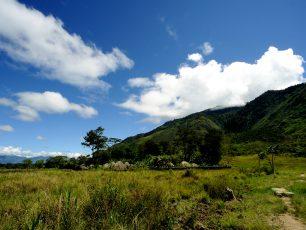 Dani, Sang Penghuni Lembah Baliem
