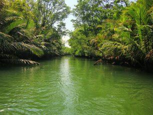 Mendayung Menikmati Suasana Alami Sungai Cigenter
